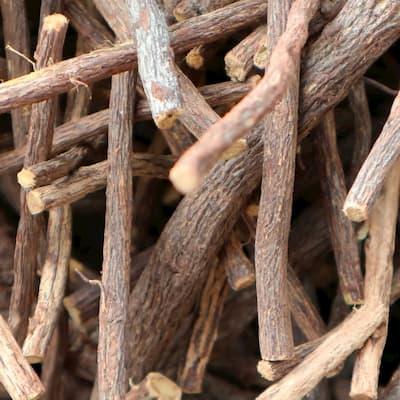 Süßholz lehrt Geduld